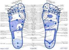 Reflexology Foot Chart This Is One Of The Better
