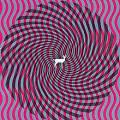Album:Cryptograms|Deerhunter, 2007