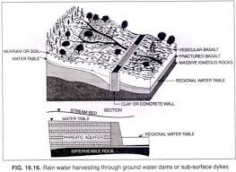 essay on rainwater harvesting