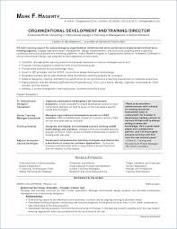Executive Level Resume Samples Classy Resume Samples Format Igniteresumes