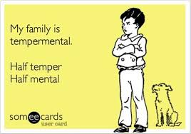 Funny Quotes About Family Classy Funnyfamilyquotes Copy