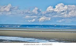 Boundary Bay Bc Tide Chart Boundary Bay Park Images Stock Photos Vectors Shutterstock
