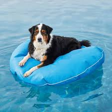 pool floats for dogs. Wonderful Floats Dog Pool Float And Lounger And Floats For Dogs Frontgate
