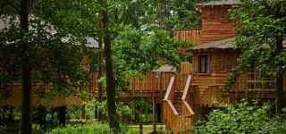 Tara Bernerd U0026 Partners  Center Parcs Treehouses  Tara Bernerd Longleat Treehouse