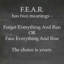 Fearless Quotes Fascinating 48 Best Fear Quotes And Sayings