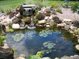 lawn garden simple outdoor waterfall design ideas in backyard with beautiful plant flower decoration