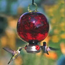 blown glass hummingbird feeder ruby red dewdrop parasol gardens top notch gift hand