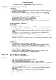 Project Manager Team Lead Resume Samples Velvet Jobs