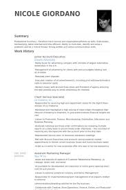 Business Resume Example Awesome Junior Account Executive Resume Samples VisualCV Resume Samples