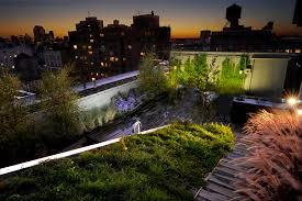 green roof of 684 broadway designed by diana balmori and associates joel sanders architect