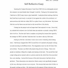 examples of an example essay cover letter writing a definition essay examples expository essay about love how to write a proposal argument