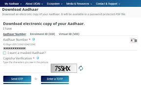 original aadhaar card not received yet