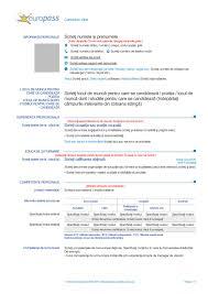 Format Of Europass Cv Best Custom Paper Writing Services