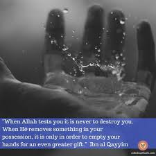 Vulnerability Quotes 99 Inspiration Allah Is A Demon Who Has Great Suckership Plans For Humanity Such As