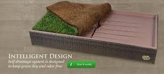 pet grass for patio designs