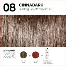 Paul Mitchell Hair Colour Chart Top Level 6 Hair Color Chart Picture Of Hair Color Ideas