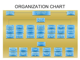 Org Chart Medtronic The Official Board