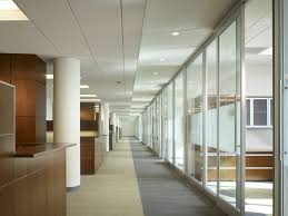 natural light office. impressive natural light office environment refreshes the space with no b