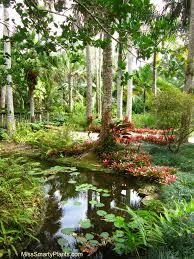 visiting mckee botanical gardens in vero beach
