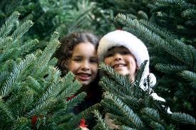 Christmas Crafts For Kids  Make Giant Christmas Trees  Kids Play BoxChristmas Tree Kids
