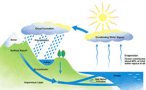 ielts writing task water cycle essay ielts simon com