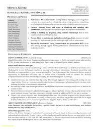Operations Manager Resume Luxury Luxury It Asset Manager Resume