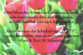 Micha Schneider On Twitter Zitate Sprüche Weisheiten News