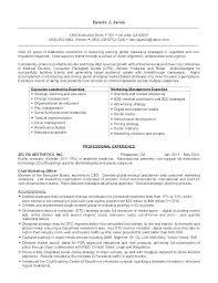 Executive Style Resume Template Nfcnbarroom Com