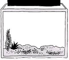 Small Picture Fish Tank Coloring Page Free Coloring Pages on Art Coloring Pages