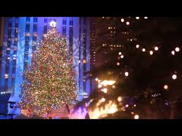 every there are several tree lighting ceremonies happening all throughout new york but none compare to the rockefeller center tree lighting
