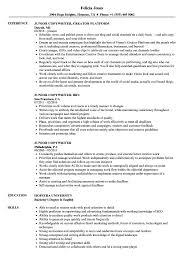 Copywriter Resume Junior Copywriter Resume Samples Velvet Jobs 14