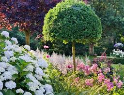 garden ideas landscaping ideas plant combinations summer borders fall borders hydrangea