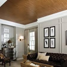 cover popcorn ceilings ceilings