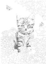 動物アニマルの大人の塗り絵ぬりえ テンプレート画像集 Naver まとめ
