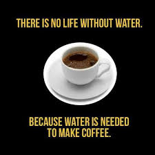 Coffee #Food Quotes #funny | The lighter side of cooking | Pinterest