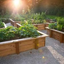 Small Picture Best 20 Raised vegetable garden beds ideas on Pinterest