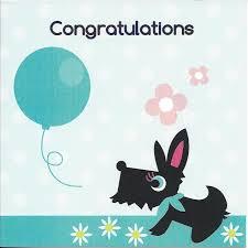Congratulations Card Bailey