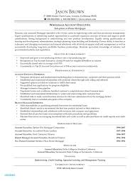 Manager Responsibilities Resume Sample Resume For Branch Sales Manager Inspiring Images Tutor