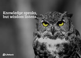 what are the differences between knowledge wisdom and insight