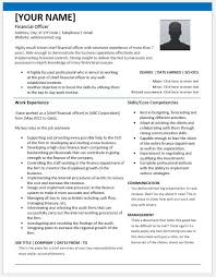 chief financial officer resumes chief financial officer resumes for ms word resume templates