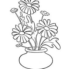 Small Picture Blooming Daisy Flower Coloring Page Blooming Daisy Flower