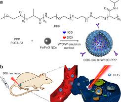 Infrared Light Kill Cancer Near Infrared Light And Tumor Microenvironment Dual