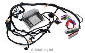 hq wiring harness hq image wiring diagram holden hq wb 5 7 ls1 gen 3 wiring loom ecu conversion custom on hq wiring