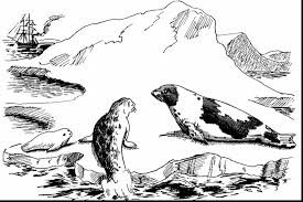 Small Picture wonderful harbor seal coloring page with seal coloring pages