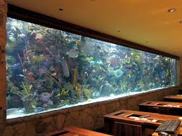 Glamorous Modern Fish Tank Stand Pictures Decoration Ideas