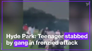 A man has been taken to hospital after being stabbed in broad daylight during a large fight in hyde park, central london. Og0 Zszoba0k4m