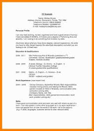 10 Example Of Resume Profile Summary Payment Format