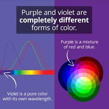 Another Word For Violet Violet And Purple Arent The Same Thing