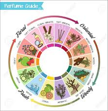 Aromatic Guide Wheel For Perfume Scent And Aroma Infographic