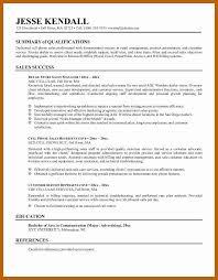 Summary Resume Example Professional Summary Resume Sample Topfreetorrentsites Com